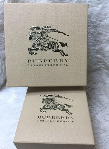 Burberry-BU1374 (7) (Copy)